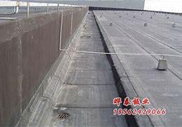 鱼台县网络推广 的图像结果