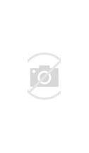 镇江新闻网 的图像结果