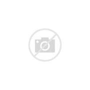 BMW宝马 的图像结果