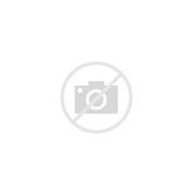 新安县网络营销 的图像结果