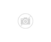 龙川县新闻网 的图像结果