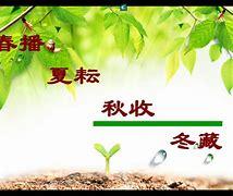 上海市徐汇中学 的图像结果