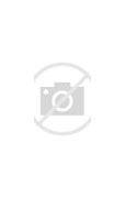 POCO摄影引流脚本 的图像结果