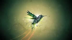 Green, Bird, Flight, Wallpapers
