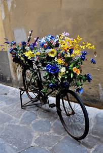 cool, bike, planters, that, will, inspire, you, to, repurpose, your, old, bike