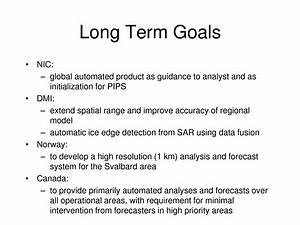 short term long term goals essay