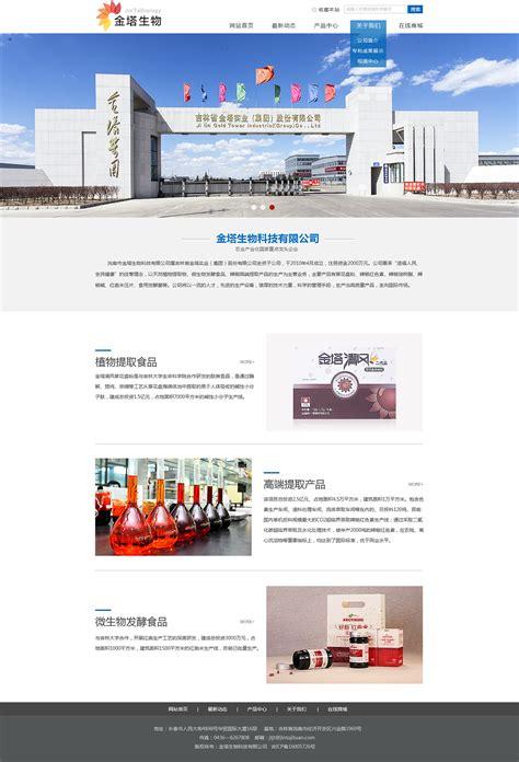 专业网站设计制作