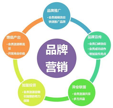 公司的营销策略