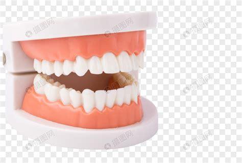 口腔护理网
