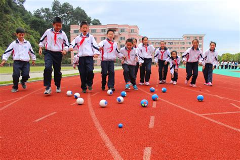 地掷球训练方法