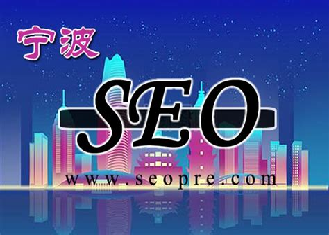 宁波seo服务