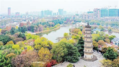 安徽省阜阳市新闻