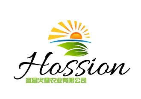 宜昌logo设计_logo设计公司