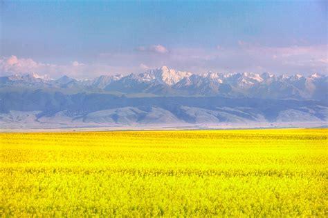 昭苏县有多少个乡镇
