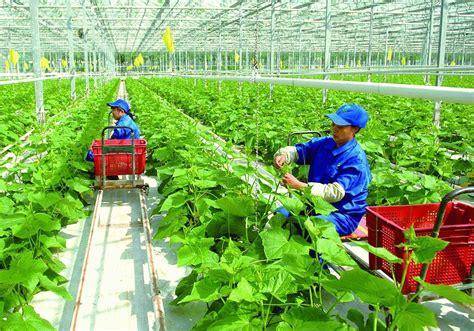 有机农业网