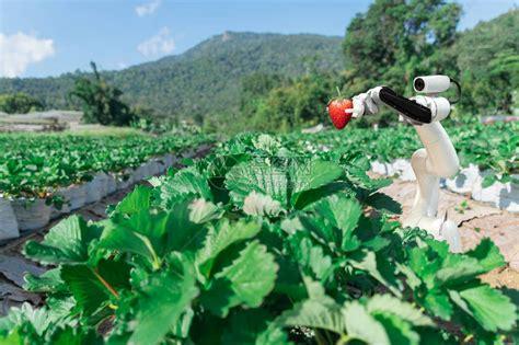 机器人农民