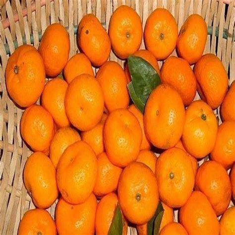 湖北荆门水果特产