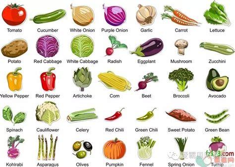 蔬菜英语单词