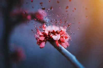 西北政法大学在职研究生难度