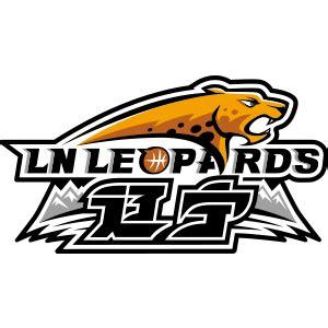 辽宁队logo